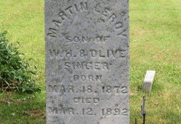 SINGER, MARTIN LEROY - Ashland County, Ohio | MARTIN LEROY SINGER - Ohio Gravestone Photos