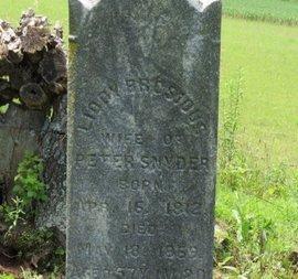 SNYDER, LIDDY - Ashland County, Ohio | LIDDY SNYDER - Ohio Gravestone Photos