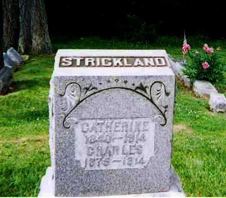 STRICKLAND, CATHERINE - Ashland County, Ohio   CATHERINE STRICKLAND - Ohio Gravestone Photos