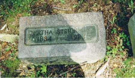 STRICKLING, BERTHA - Ashland County, Ohio | BERTHA STRICKLING - Ohio Gravestone Photos