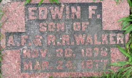 WALKER, EDWIN F. - Ashland County, Ohio | EDWIN F. WALKER - Ohio Gravestone Photos