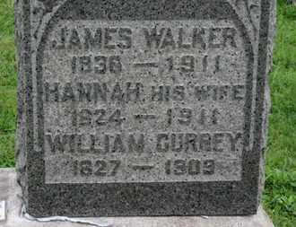 WALKER, HANNAH - Ashland County, Ohio | HANNAH WALKER - Ohio Gravestone Photos
