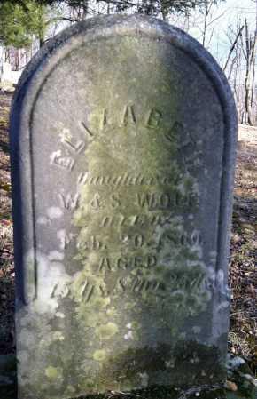 WOLFE, ELIZABETH - Ashland County, Ohio | ELIZABETH WOLFE - Ohio Gravestone Photos