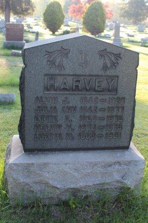 HARVEY, JULIA ANN - Ashtabula County, Ohio | JULIA ANN HARVEY - Ohio Gravestone Photos