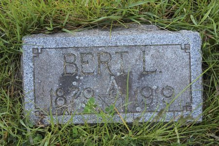 HARVEY, BERT LEON - Ashtabula County, Ohio | BERT LEON HARVEY - Ohio Gravestone Photos
