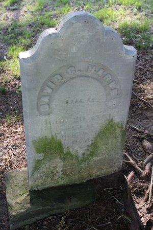 HARVEY, DAVID - Ashtabula County, Ohio   DAVID HARVEY - Ohio Gravestone Photos