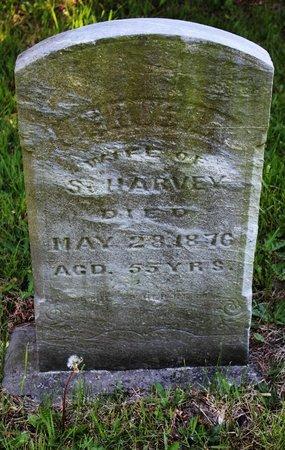 HARVEY, JERUSHA - Ashtabula County, Ohio | JERUSHA HARVEY - Ohio Gravestone Photos