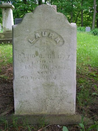 HARVEY, LAURA C. - Ashtabula County, Ohio | LAURA C. HARVEY - Ohio Gravestone Photos