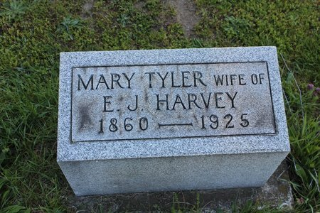 TYLER HARVEY, MARY - Ashtabula County, Ohio | MARY TYLER HARVEY - Ohio Gravestone Photos