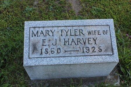 TYLER HARVEY, MARY - Ashtabula County, Ohio | MARY TYLER HARVEY - Ohio Gravestone Photos