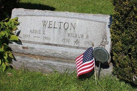 WELTON, WILBUR RAYMOND - Ashtabula County, Ohio | WILBUR RAYMOND WELTON - Ohio Gravestone Photos