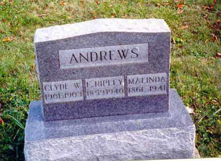 ANDREWS, MALINDA - Athens County, Ohio | MALINDA ANDREWS - Ohio Gravestone Photos
