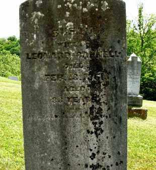 CARNELL, SUSAN - Athens County, Ohio | SUSAN CARNELL - Ohio Gravestone Photos