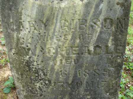 GIBSON CHEADLE, MARY - Athens County, Ohio | MARY GIBSON CHEADLE - Ohio Gravestone Photos