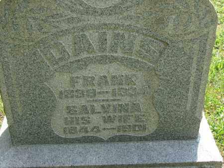 DAINS, SALVINA - Athens County, Ohio | SALVINA DAINS - Ohio Gravestone Photos