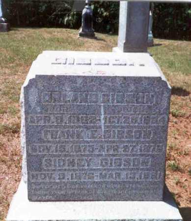 GIBSON, SIDNEY - Athens County, Ohio | SIDNEY GIBSON - Ohio Gravestone Photos