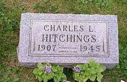 HITCHINGS, CHARLES LESTER - Athens County, Ohio | CHARLES LESTER HITCHINGS - Ohio Gravestone Photos
