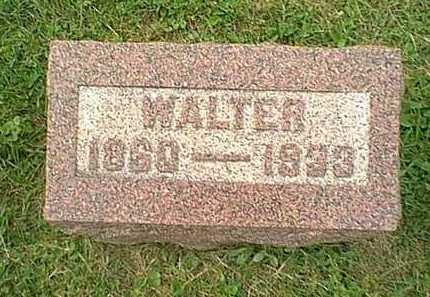 HITCHINGS, JAMES WALTER - Athens County, Ohio | JAMES WALTER HITCHINGS - Ohio Gravestone Photos