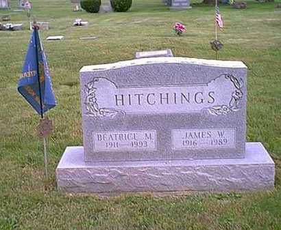 HITCHINGS, JAMES W, - Athens County, Ohio | JAMES W, HITCHINGS - Ohio Gravestone Photos