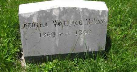 WALLACE MCVAY, BERTHA - Athens County, Ohio   BERTHA WALLACE MCVAY - Ohio Gravestone Photos