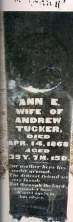 TUCKER, ANN E. - Athens County, Ohio | ANN E. TUCKER - Ohio Gravestone Photos