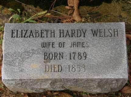 HARDY WELSH, ELIZABETH - Athens County, Ohio | ELIZABETH HARDY WELSH - Ohio Gravestone Photos