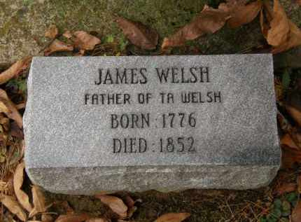 WELSH, T.A. - Athens County, Ohio | T.A. WELSH - Ohio Gravestone Photos