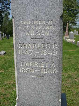 WILSON, CHARLES C. - Athens County, Ohio | CHARLES C. WILSON - Ohio Gravestone Photos