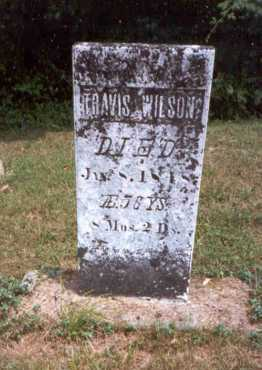 WILSON, TRAVIS - Athens County, Ohio | TRAVIS WILSON - Ohio Gravestone Photos