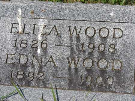 DAVIDSON WOOD, ELIZA - Athens County, Ohio | ELIZA DAVIDSON WOOD - Ohio Gravestone Photos
