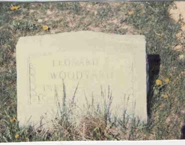 WOODYARD, LEONARD P. - Athens County, Ohio | LEONARD P. WOODYARD - Ohio Gravestone Photos