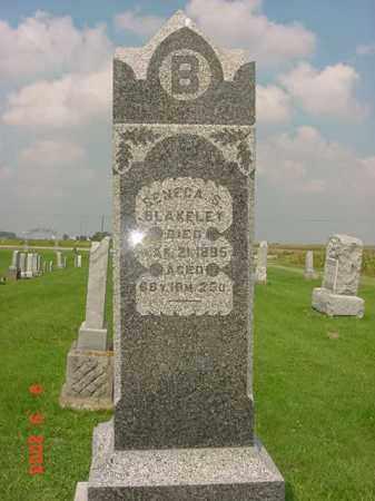 BLAKELEY, SENECA S. - Auglaize County, Ohio | SENECA S. BLAKELEY - Ohio Gravestone Photos