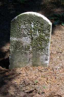 BRODRICK, CASE - Auglaize County, Ohio | CASE BRODRICK - Ohio Gravestone Photos