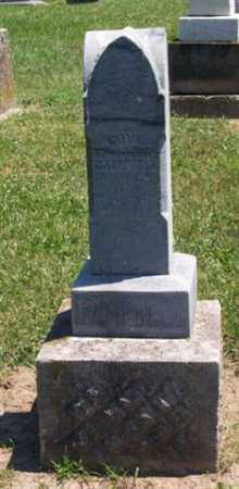 CAMPBELL, LOVE - Auglaize County, Ohio | LOVE CAMPBELL - Ohio Gravestone Photos