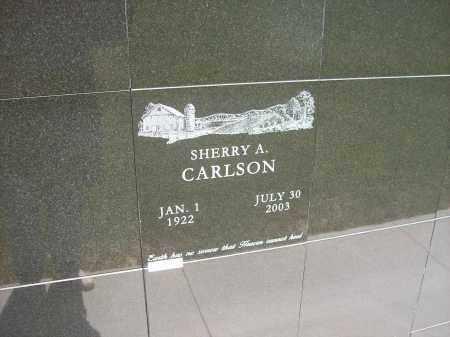 CARLSON, SHERRY A. - Auglaize County, Ohio   SHERRY A. CARLSON - Ohio Gravestone Photos