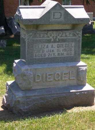 DIEGEL, ELIZA A - Auglaize County, Ohio | ELIZA A DIEGEL - Ohio Gravestone Photos