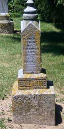 GALLIMORE, VERNON R - Auglaize County, Ohio | VERNON R GALLIMORE - Ohio Gravestone Photos