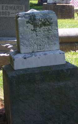 WISELEY GILLMORE, NAOMI G - Auglaize County, Ohio   NAOMI G WISELEY GILLMORE - Ohio Gravestone Photos