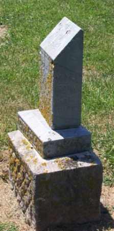 GRAHAM, MARY - Auglaize County, Ohio | MARY GRAHAM - Ohio Gravestone Photos
