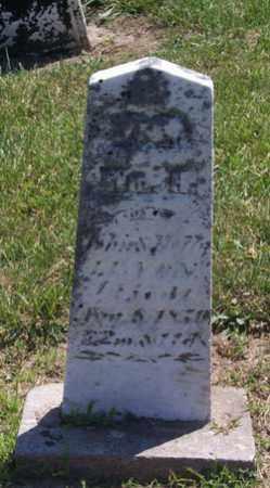 LENOX, WILLIAM - Auglaize County, Ohio   WILLIAM LENOX - Ohio Gravestone Photos