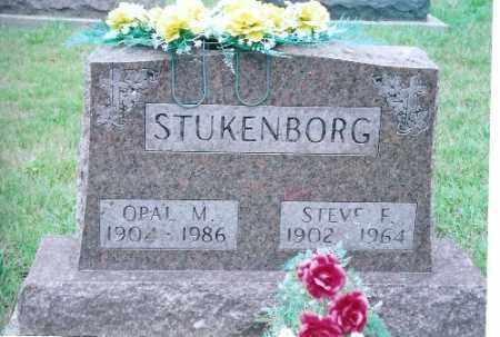STUKENBORG, STEVE F. - Auglaize County, Ohio | STEVE F. STUKENBORG - Ohio Gravestone Photos