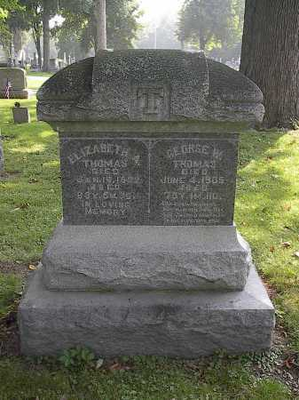 THOMAS, ELIZABETH ANN - Auglaize County, Ohio | ELIZABETH ANN THOMAS - Ohio Gravestone Photos