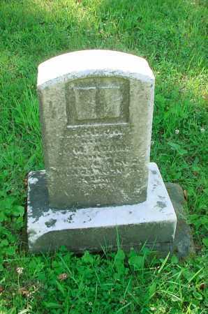ADAMS, WILLIAM - Belmont County, Ohio | WILLIAM ADAMS - Ohio Gravestone Photos