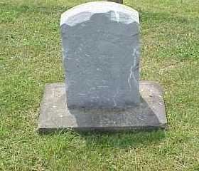 AMBLER, LUVISA - Belmont County, Ohio   LUVISA AMBLER - Ohio Gravestone Photos