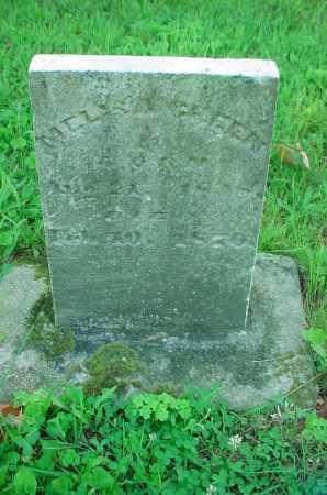 GREEN, M - Belmont County, Ohio | M GREEN - Ohio Gravestone Photos