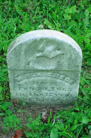 GREGG, W - Belmont County, Ohio   W GREGG - Ohio Gravestone Photos
