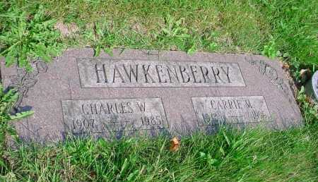 HAWKENBERRY, CHARLES W. - Belmont County, Ohio | CHARLES W. HAWKENBERRY - Ohio Gravestone Photos