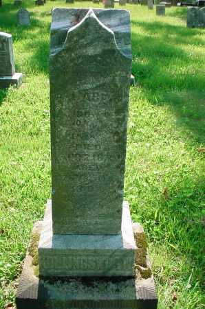 HOLLINGSWORTH, UNKNOWN - Belmont County, Ohio | UNKNOWN HOLLINGSWORTH - Ohio Gravestone Photos