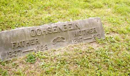 OCHSENBEIN, MARION ARMINTA - Belmont County, Ohio | MARION ARMINTA OCHSENBEIN - Ohio Gravestone Photos