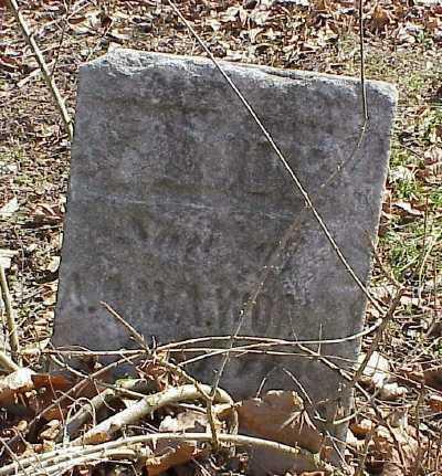 WORLY, SAMUEL - Belmont County, Ohio | SAMUEL WORLY - Ohio Gravestone Photos